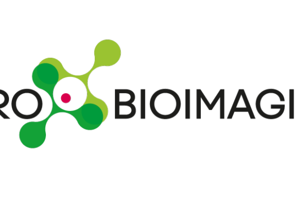 Euro-Bioimaging invites applications for Director of Medical Imaging